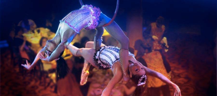 Spéctacle-dîner Cirque Dreams