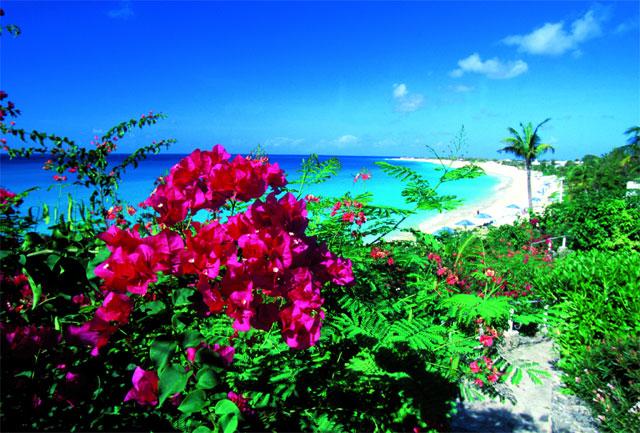 plage paradisiaque de Saint Martin