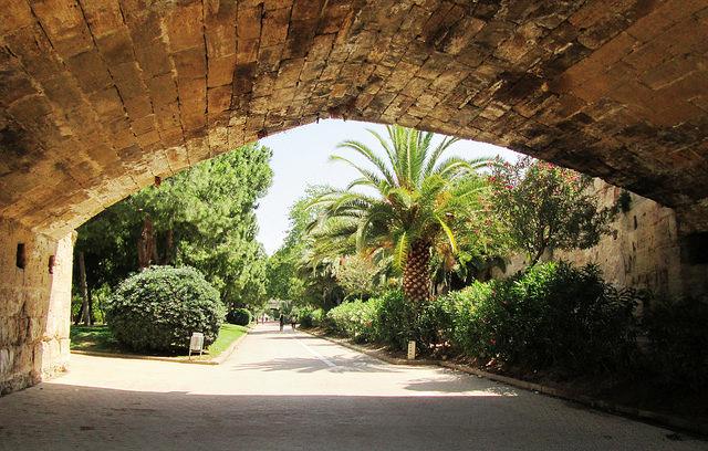 Jardins de Turia à Valence