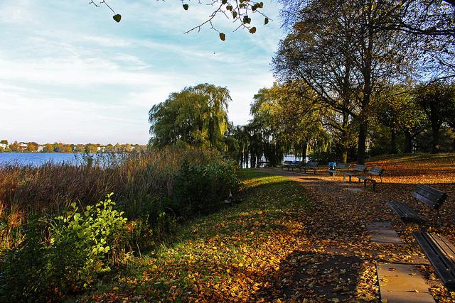 Parc et lac naturel hambourg