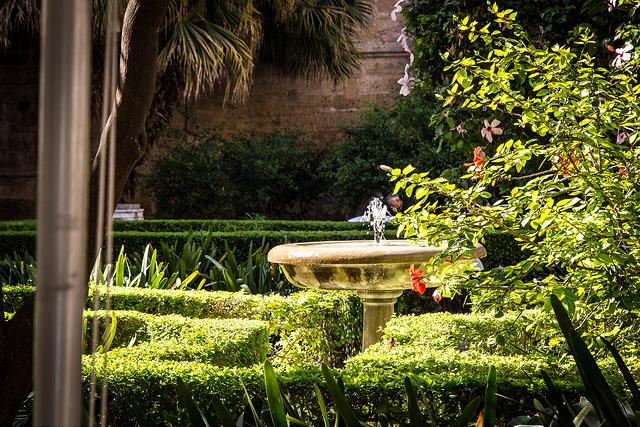 jardin de botanique malaga