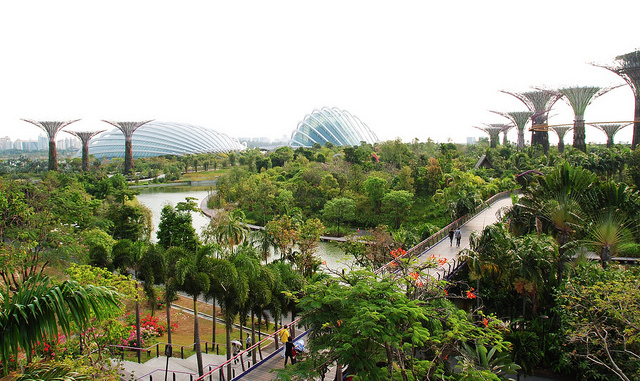 Garden by the bay Singapour