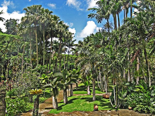 jardin de batala fort de france