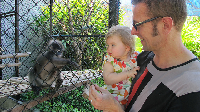 le zoo de koh samui